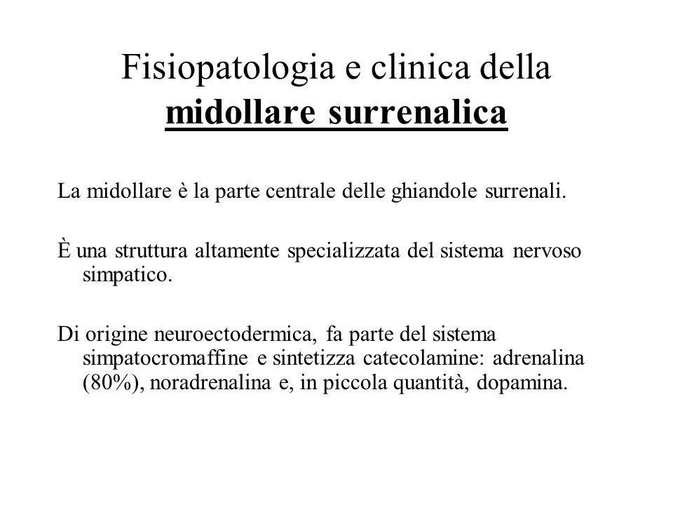 Iperaldosteronismi secondari Con ipertensione arteriosa ( > produzione di renina) –Ipertensione nefrovascolare –Ipertensione maligna –Reninoma Senza i