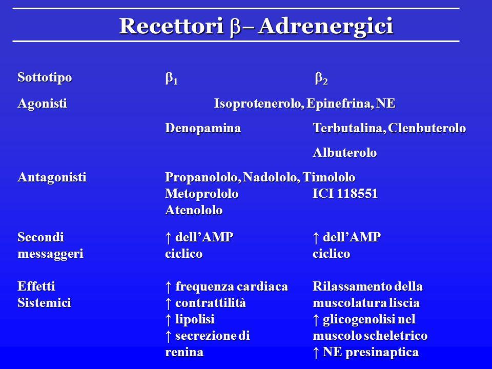 Recettori  Adrenergici Sottotipo  1  2 Agonisti epinefrina norepinefrina FenilefrinaClonidina Metossaminaa-metil NE AntagonistiFentolamina, Fenoss