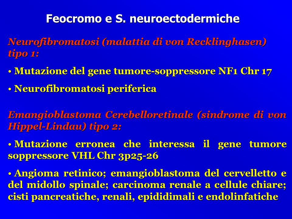 Forma familiari di Feocromocitoma I Neoplasia Endocrina Multipla tipo 2a (Sindrome di Sipple): Mutazione del protoncogene RET Chr 10q11.2 Mutazione de