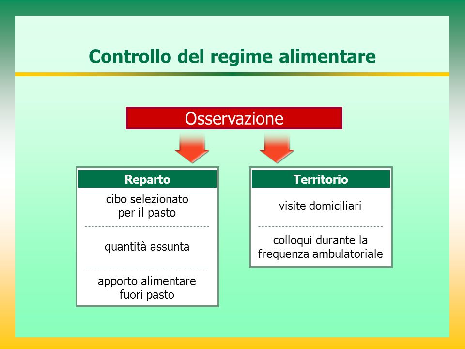 Controllo del regime alimentare Reparto cibo selezionato per il pasto Territorio visite domiciliari Osservazione quantità assunta colloqui durante la