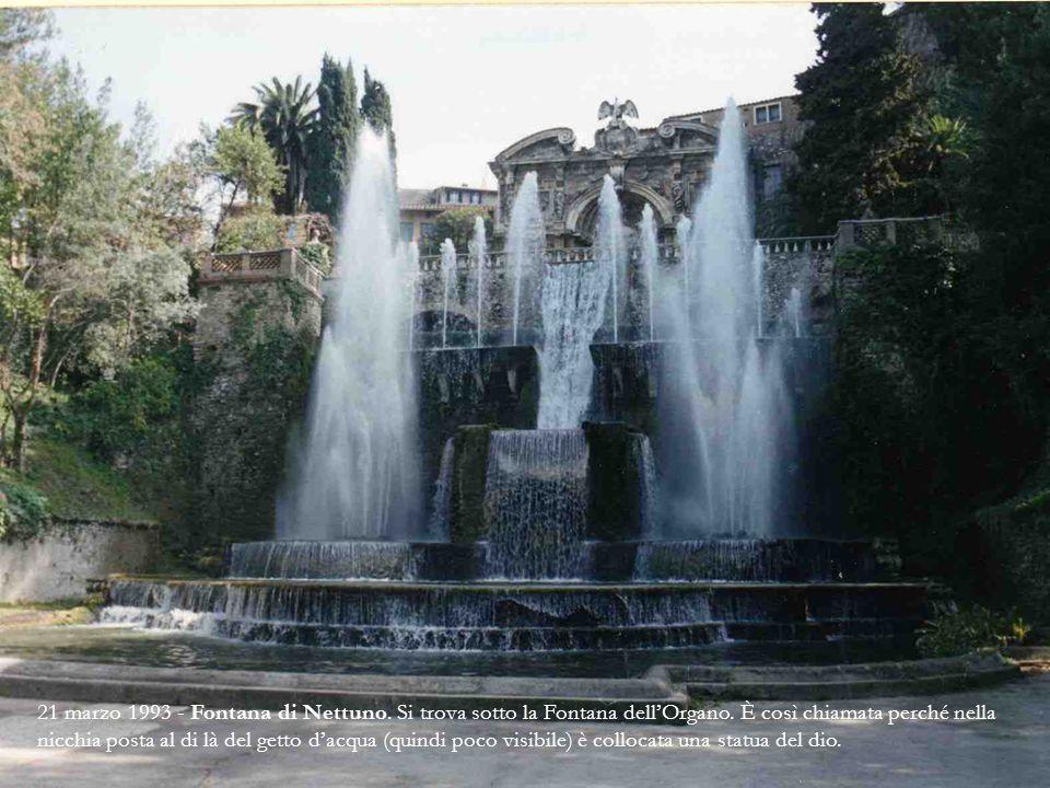 24 febbraio 2007 Altra foto della Fontana dell'Organo