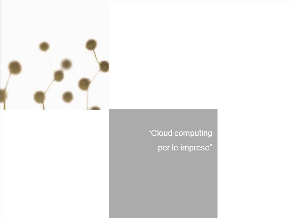 """""""Cloud computing per le imprese"""""""
