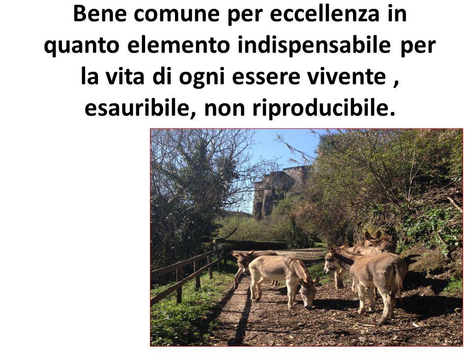 Bene comune per eccellenza in quanto elemento indispensabile per la vita di ogni essere vivente, esauribile, non riproducibile.