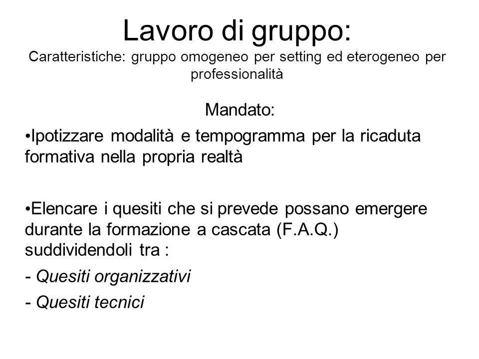 Lavoro di gruppo: Caratteristiche: gruppo omogeneo per setting ed eterogeneo per professionalità Mandato: Ipotizzare modalità e tempogramma per la ric