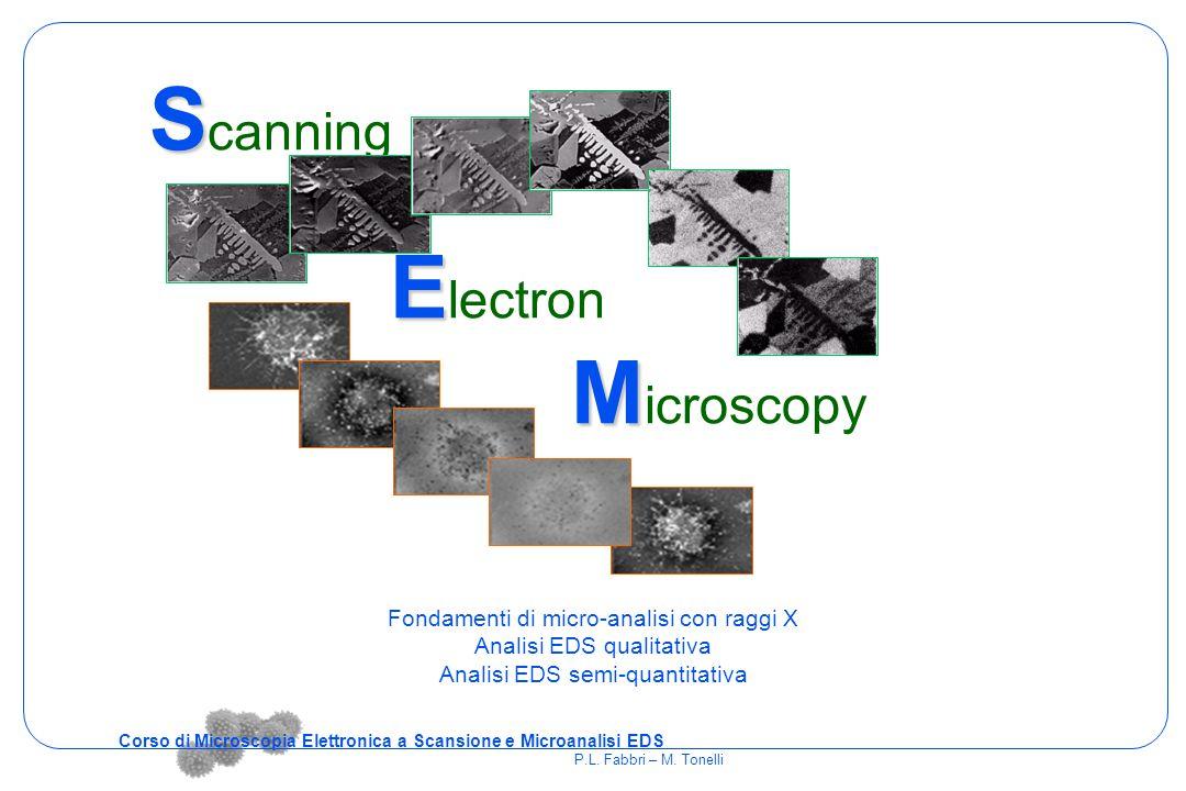 S S canning E E lectron M M icroscopy Fondamenti di micro-analisi con raggi X Analisi EDS qualitativa Analisi EDS semi-quantitativa Corso di Microscop