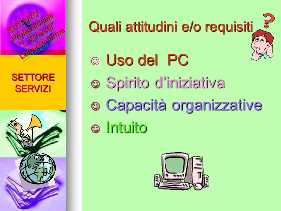 Quali attitudini e/o requisiti Uso del PC Uso del PC Spirito d'iniziativa Spirito d'iniziativa Capacità organizzative Capacità organizzative Intuito I
