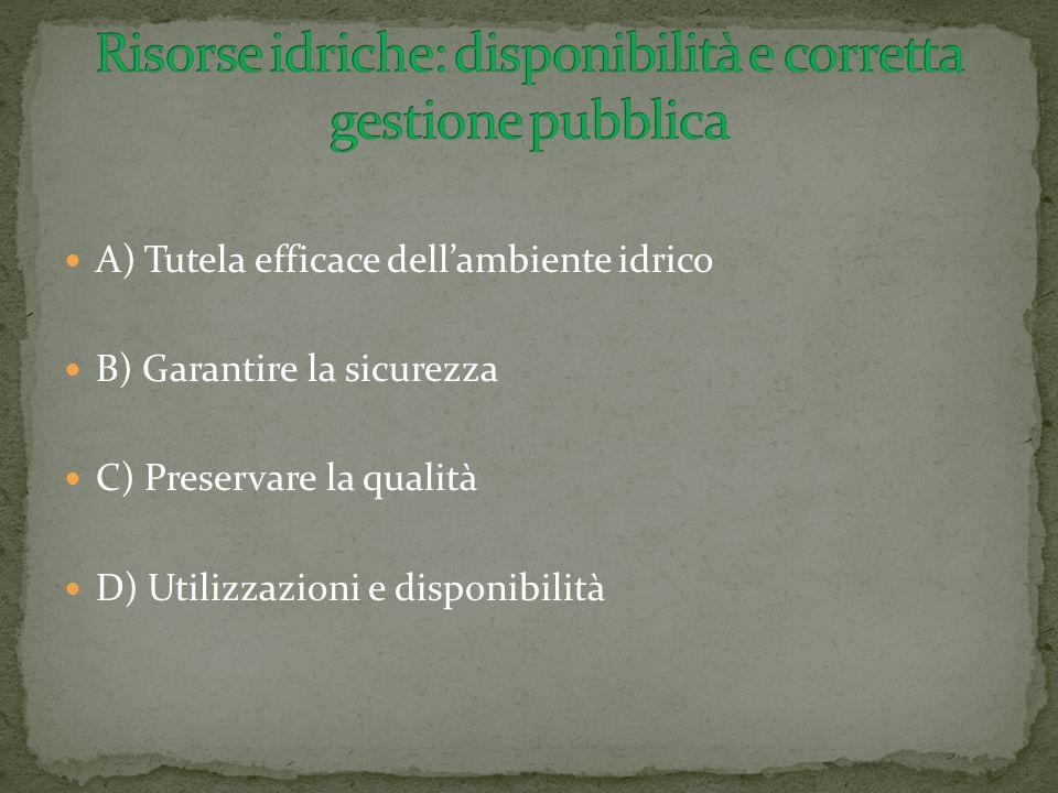 A) Tutela efficace dell'ambiente idrico B) Garantire la sicurezza C) Preservare la qualità D) Utilizzazioni e disponibilità