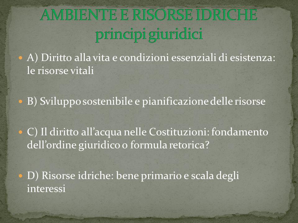 A) Diritto alla vita e condizioni essenziali di esistenza: le risorse vitali B) Sviluppo sostenibile e pianificazione delle risorse C) Il diritto all'