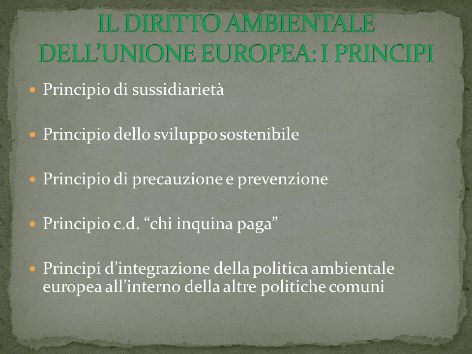 """Principio di sussidiarietà Principio dello sviluppo sostenibile Principio di precauzione e prevenzione Principio c.d. """"chi inquina paga"""" Principi d'in"""