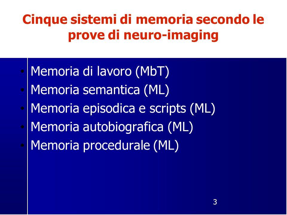 3 Cinque sistemi di memoria secondo le prove di neuro-imaging Memoria di lavoro (MbT) Memoria semantica (ML) Memoria episodica e scripts (ML) Memoria autobiografica (ML) Memoria procedurale (ML)