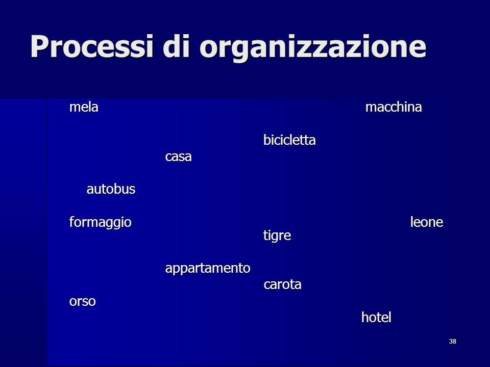 38 Processi di organizzazione mela macchina biciclettacasaautobus formaggioleone tigre appartamentocarotaorsohotel