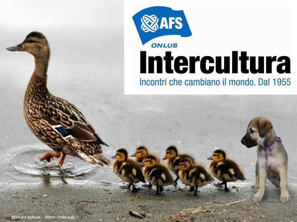 Che cos'è Intercultura.