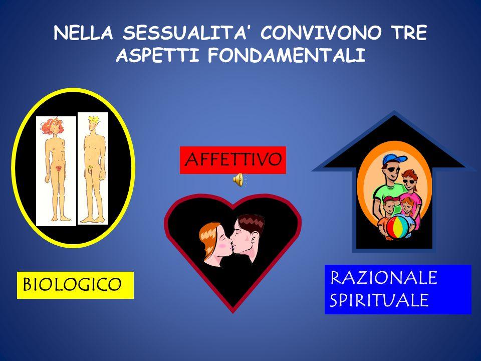 NELLA SESSUALITA' CONVIVONO TRE ASPETTI FONDAMENTALI AFFETTIVO BIOLOGICO RAZIONALE SPIRITUALE