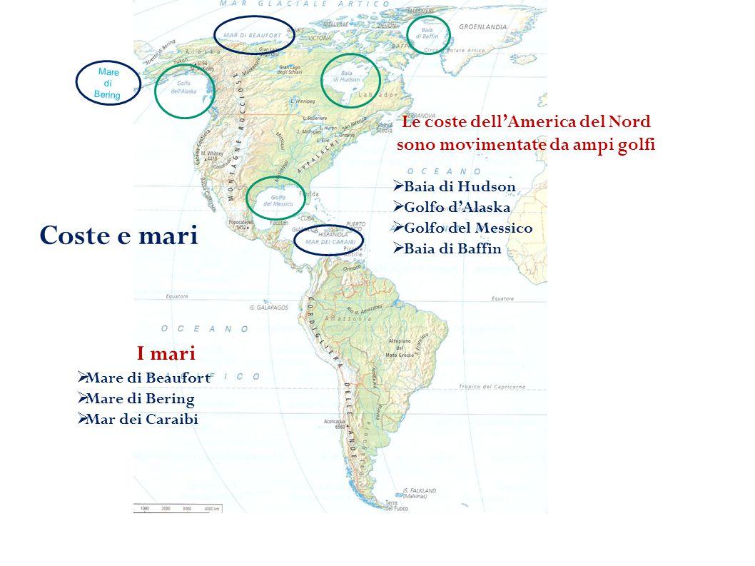 I rilievi più importanti America del nord  Montagne rocciose  Catena costiera  Monti Appalachi America del sud  Cordigliera delle Ande  Altopiano del Mato Grosso