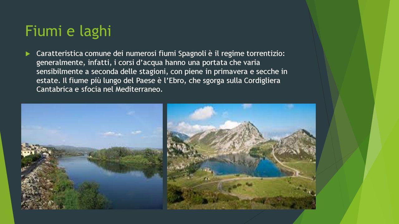 Fiumi e laghi  Caratteristica comune dei numerosi fiumi Spagnoli è il regime torrentizio: generalmente, infatti, i corsi d'acqua hanno una portata ch