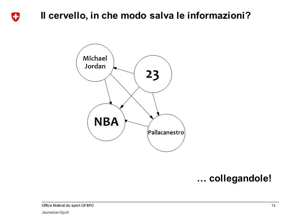 14 Office fédéral du sport OFSPO Jeunesse+Sport … collegandole! NBA Michael Jordan 23 Pallacanestro Il cervello, in che modo salva le informazioni?