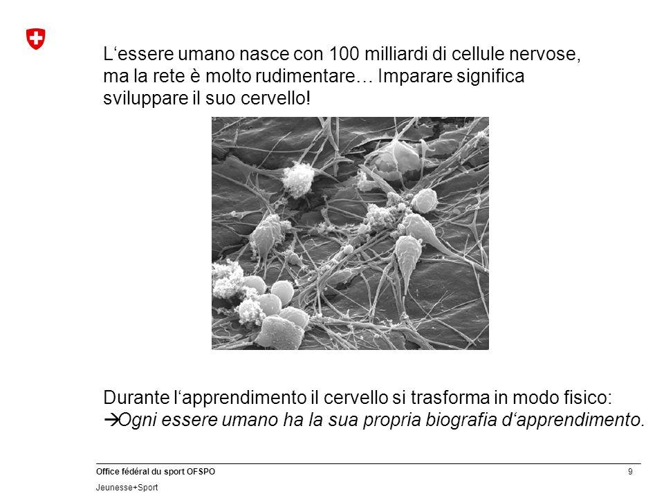 9 Office fédéral du sport OFSPO Jeunesse+Sport L'essere umano nasce con 100 milliardi di cellule nervose, ma la rete è molto rudimentare… Imparare sig