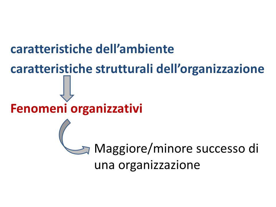 caratteristiche dell'ambiente caratteristiche strutturali dell'organizzazione Fenomeni organizzativi Maggiore/minore successo di una organizzazione