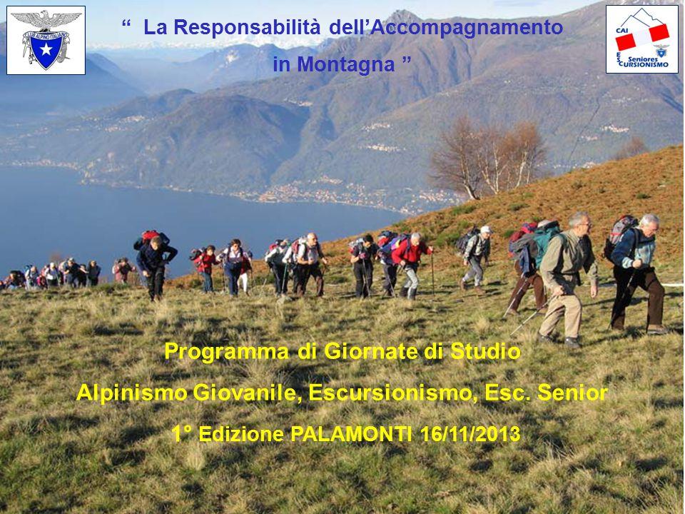 """"""" La Responsabilità dell'Accompagnamento in Montagna """" Programma di Giornate di Studio Alpinismo Giovanile, Escursionismo, Esc. Senior 1° Edizione PAL"""