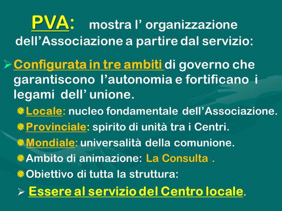 PVA PVA: mostra l' organizzazione dell'Associazione a partire dal servizio:  Configurata in tre ambiti di governo che garantiscono l'autonomia e fortificano i legami dell' unione.