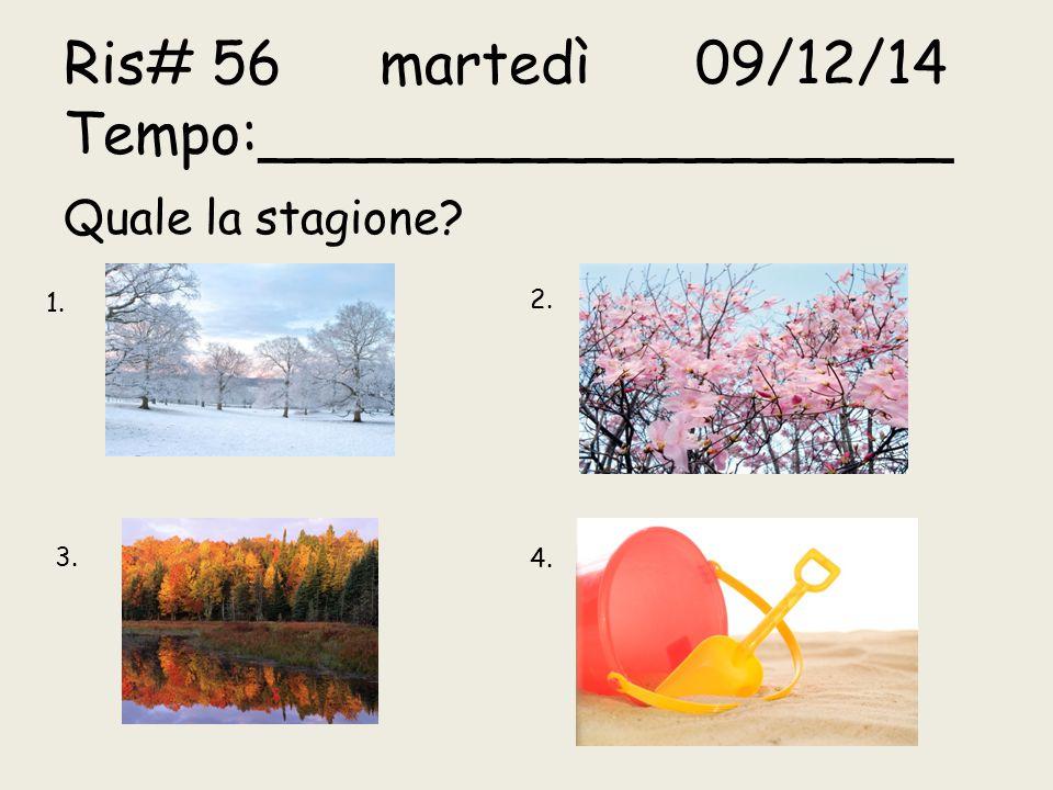 Ris# 56martedì09/12/14 Tempo:___________________ Quale la stagione? 1. 2. 3. 4.