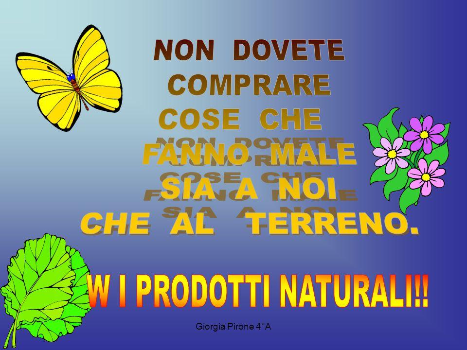 Giorgia Pirone 4°A