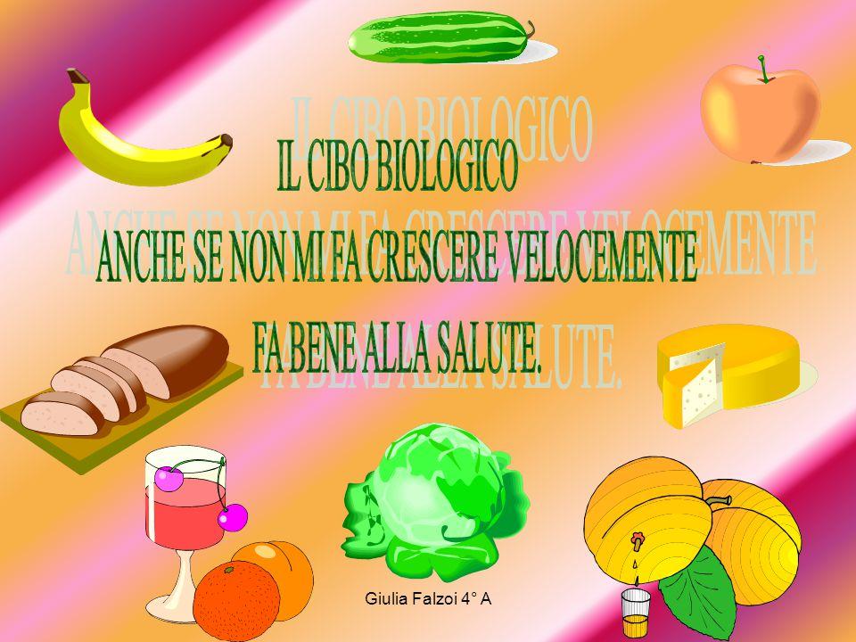 Giulia Falzoi 4° A