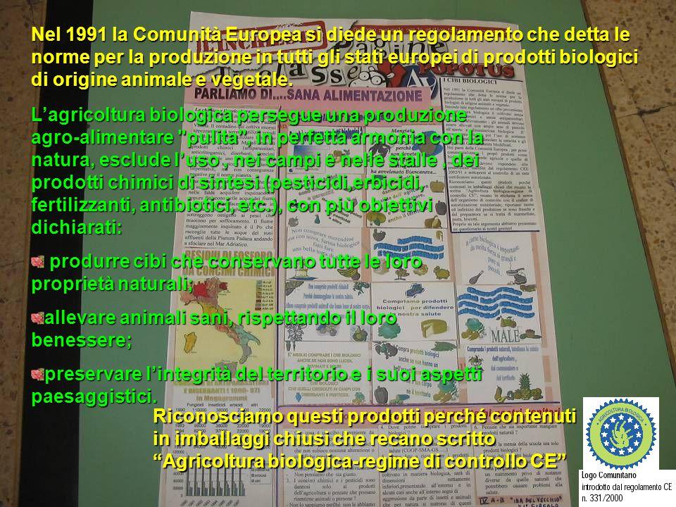 POPOTUS 2004-2005 Nel 1991 la Comunità Europea si diede un regolamento che detta le norme per la produzione in tutti gli stati europei di prodotti bio