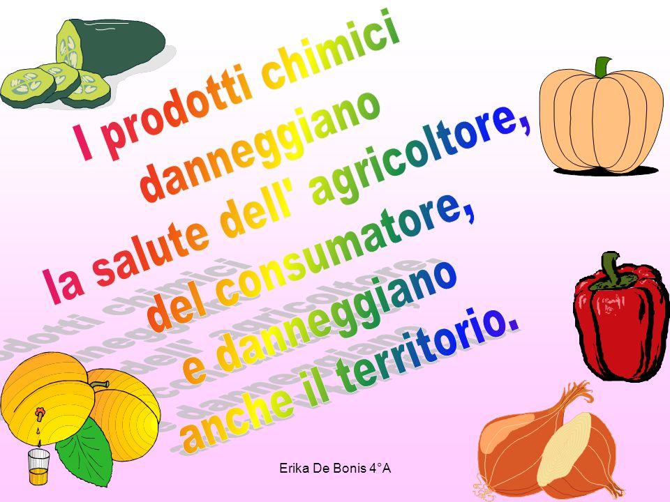 POPOTUS 2004-2005 Nel 1991 la Comunità Europea si diede un regolamento che detta le norme per la produzione in tutti gli stati europei di prodotti biologici di origine animale e vegetale.