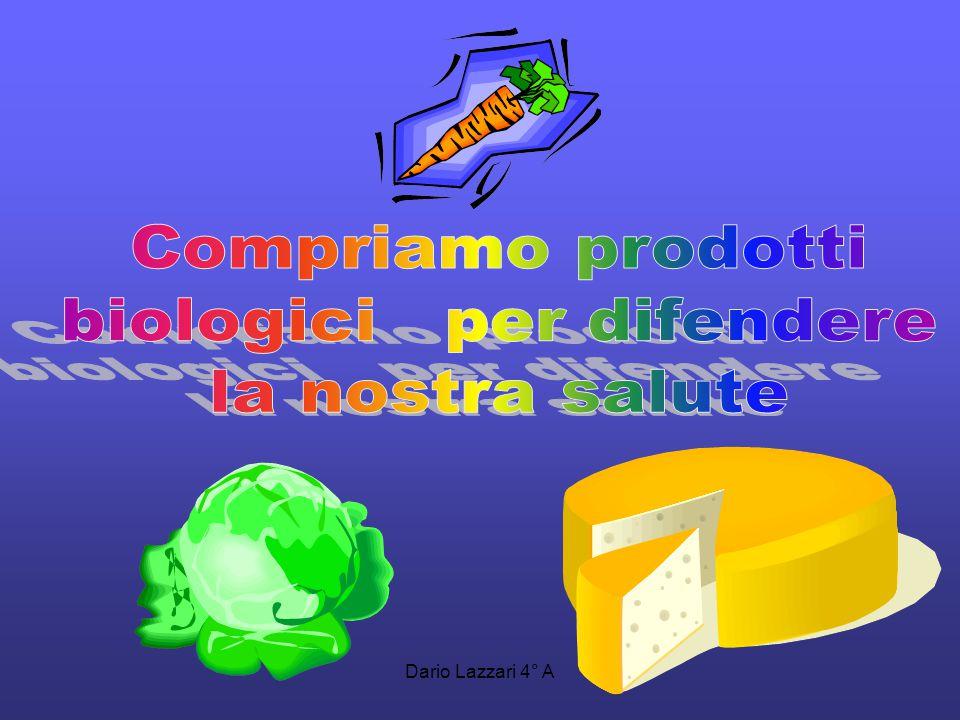Luca Frabetti 4° A