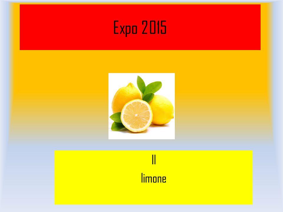 Expo 2015 Il limone
