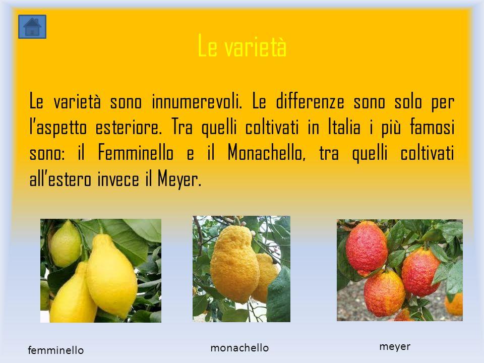 Utilizzi e proprietà prodotti tipici proprietà Il succo del limone contiene: acido citrico,potassio, sali minerali.