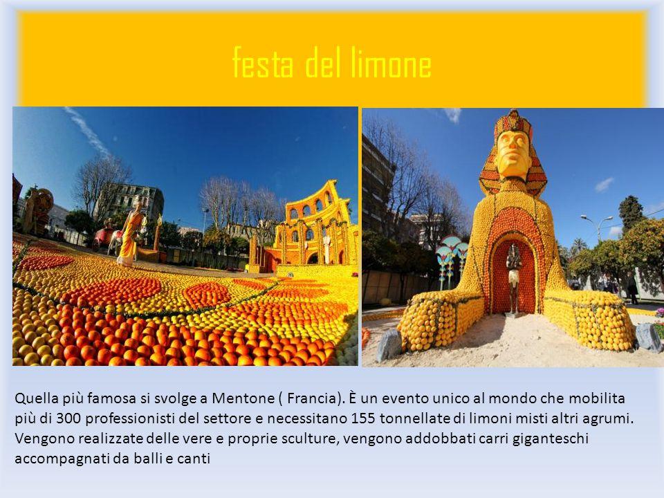 festa del limone Quella più famosa si svolge a Mentone ( Francia).