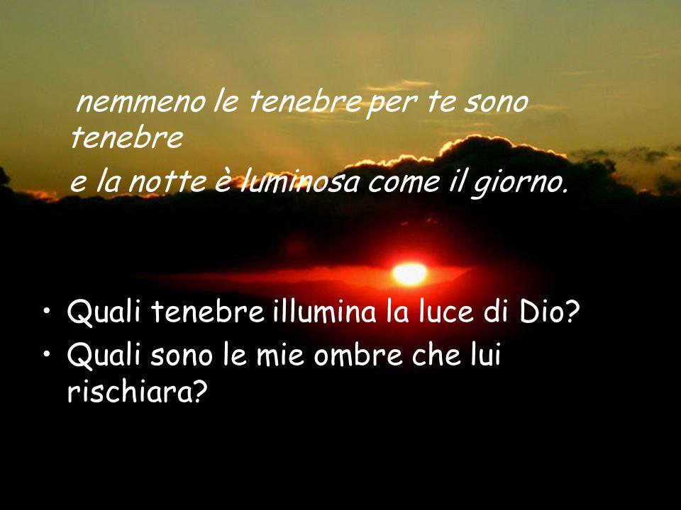 nemmeno le tenebre per te sono tenebre e la notte è luminosa come il giorno. Quali tenebre illumina la luce di Dio? Quali sono le mie ombre che lui ri