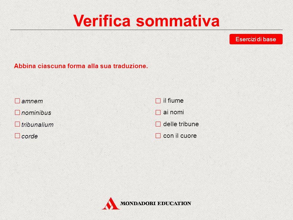 Verifica sommativa Abbina ciascuna forma alla sua analisi.