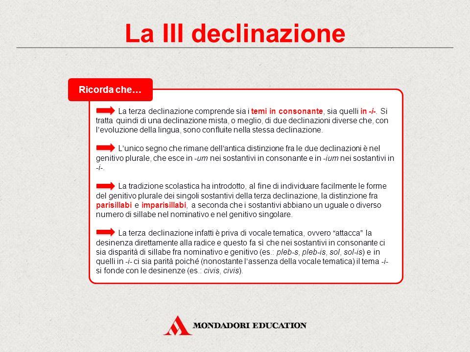 La III declinazione La III declinazione comprende: sostantivi maschili, femminili e neutri.