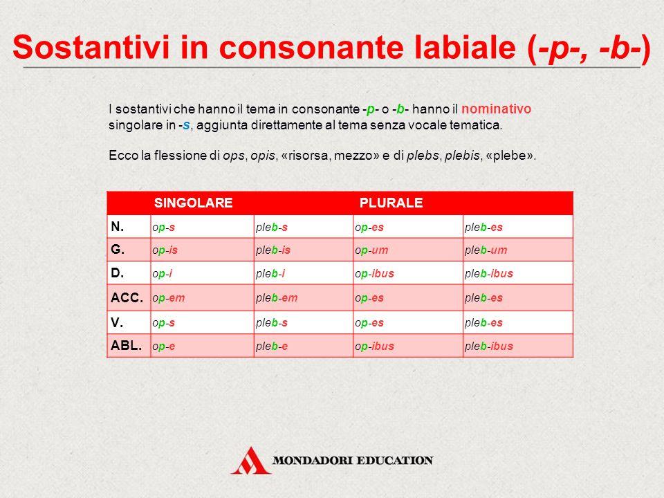 La III declinazione La terza declinazione comprende sia i temi in consonante, sia quelli in -i-.
