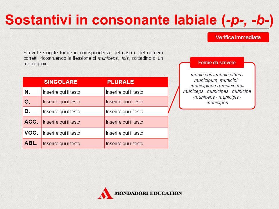 Sostantivi in consonante labiale (-p-, -b-) Hanno il tema in labiale solo sostantivi maschili e femminili Questi sostantivi (imparisillabi) hanno il genitivo plurale in -um.