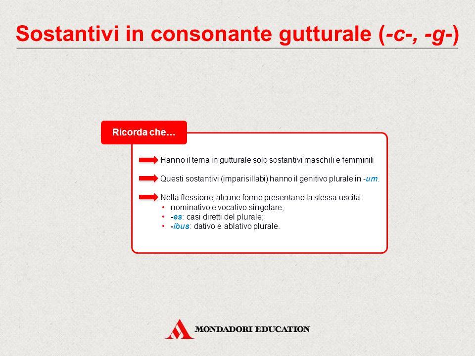 Sostantivi in consonante gutturale (-c-, -g-) I sostantivi che hanno il tema in consonante -c- o -g- hanno il nominativo singolare in -s, aggiunta direttamente al tema senza vocale tematica.