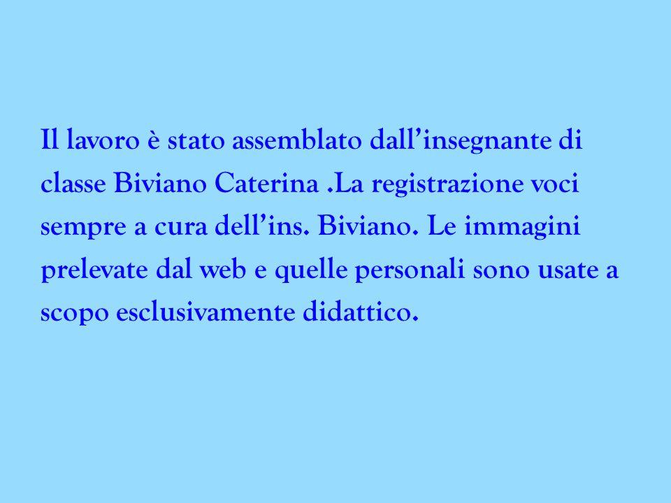 Il lavoro è stato assemblato dall'insegnante di classe Biviano Caterina.La registrazione voci sempre a cura dell'ins.