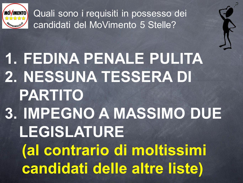 Quali sono i requisiti in possesso dei candidati del MoVimento 5 Stelle.