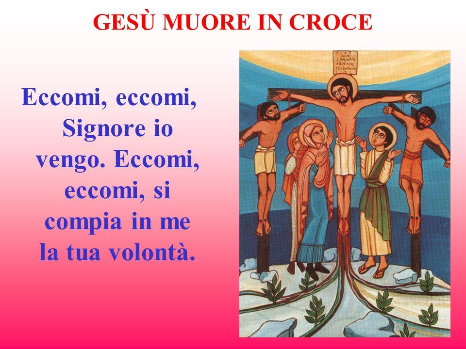 GESÙ MUORE IN CROCE Eccomi, eccomi, Signore io vengo. Eccomi, eccomi, si compia in me la tua volontà.