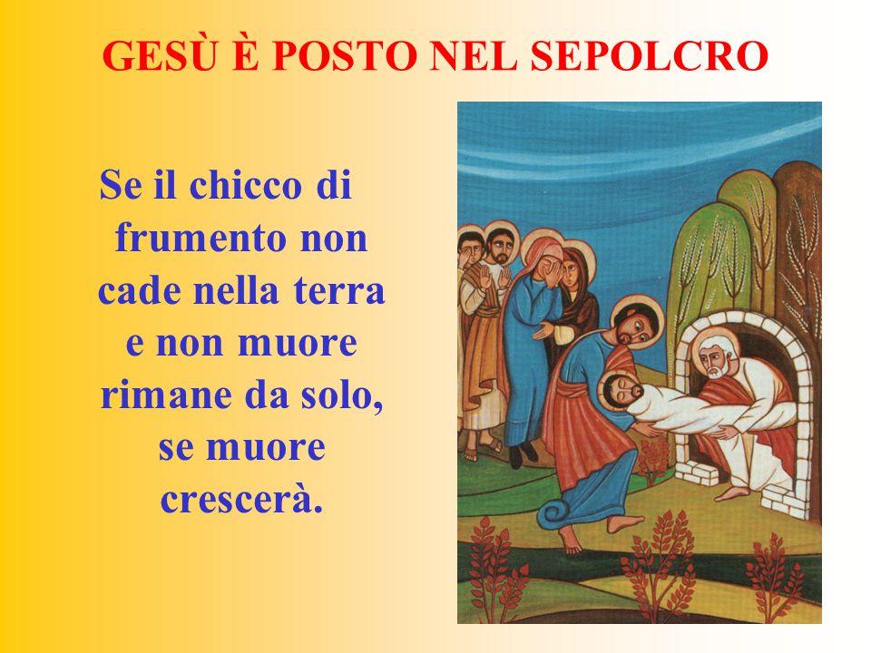 GESÙ È POSTO NEL SEPOLCRO Se il chicco di frumento non cade nella terra e non muore rimane da solo, se muore crescerà.