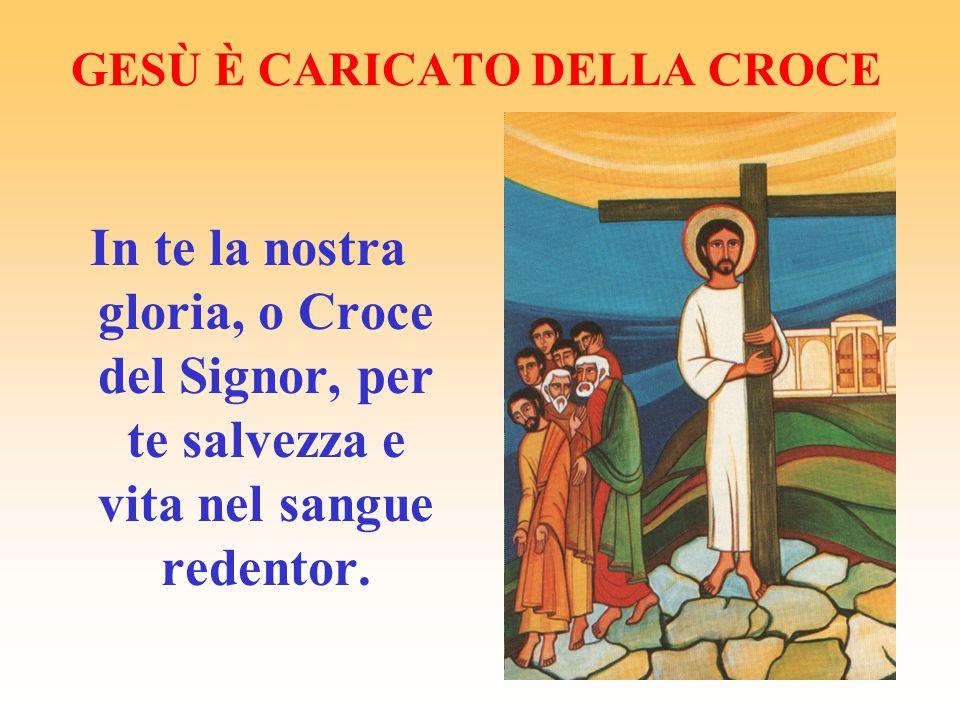 GESÙ È CARICATO DELLA CROCE In te la nostra gloria, o Croce del Signor, per te salvezza e vita nel sangue redentor.