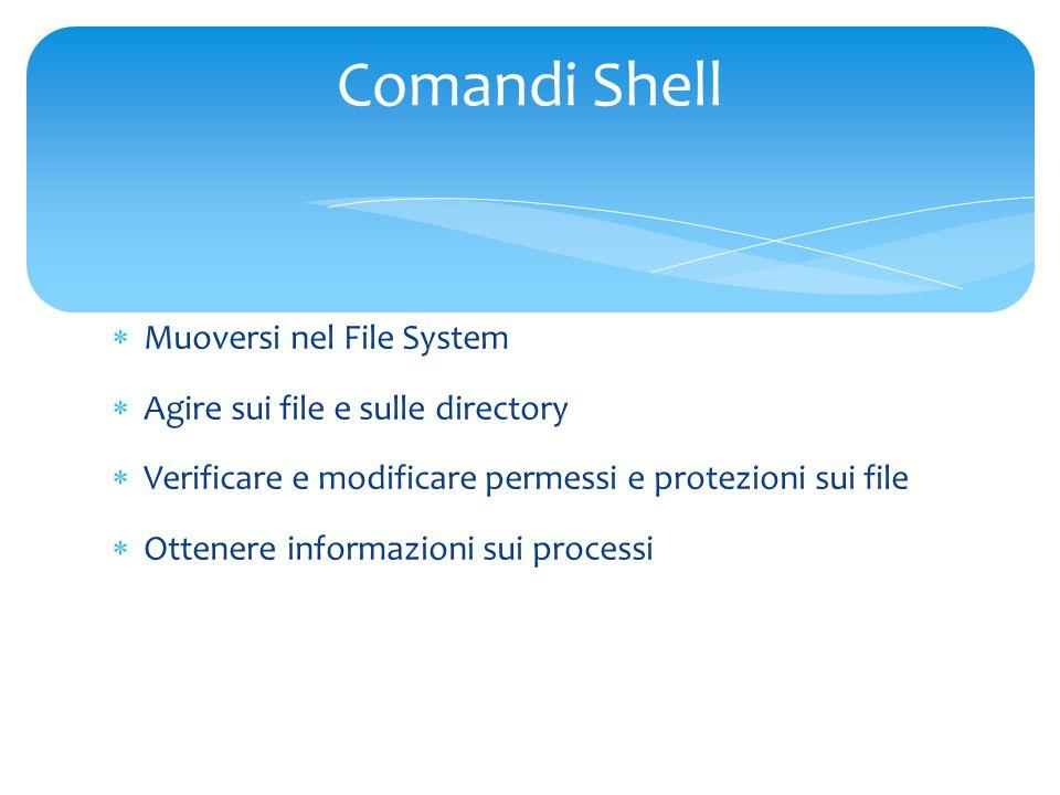  Muoversi nel File System  Agire sui file e sulle directory  Verificare e modificare permessi e protezioni sui file  Ottenere informazioni sui processi Comandi Shell