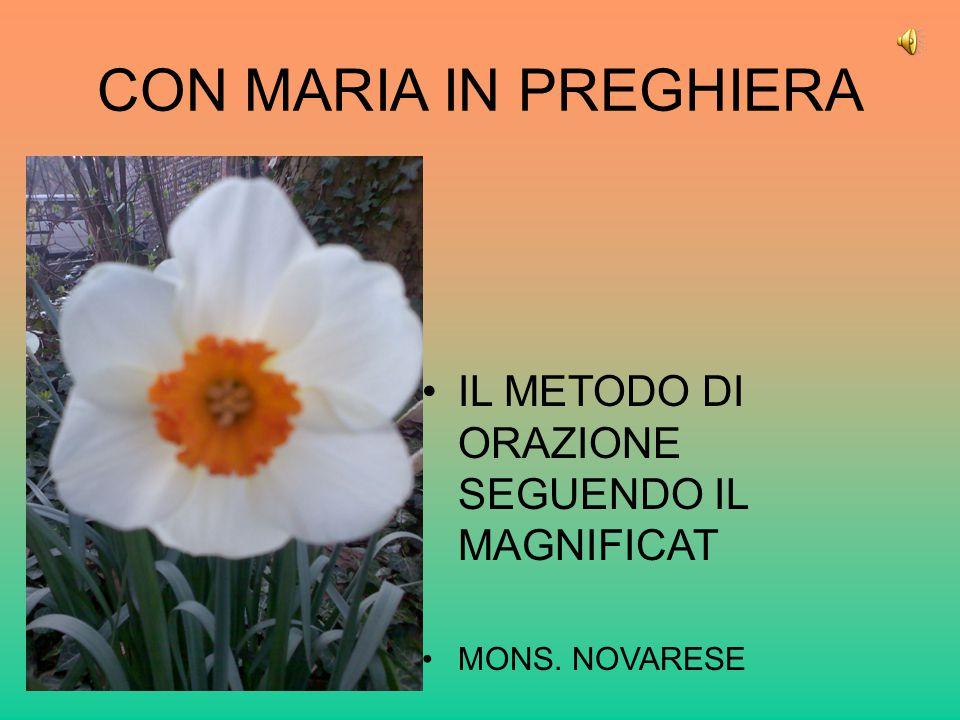 CON MARIA IN PREGHIERA IL METODO DI ORAZIONE SEGUENDO IL MAGNIFICAT MONS. NOVARESE