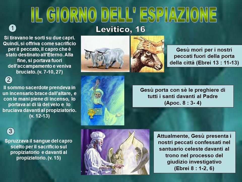 Il santuario veniva purificato dalle trasgressioni e dai peccati dei figli d'Israele (v.