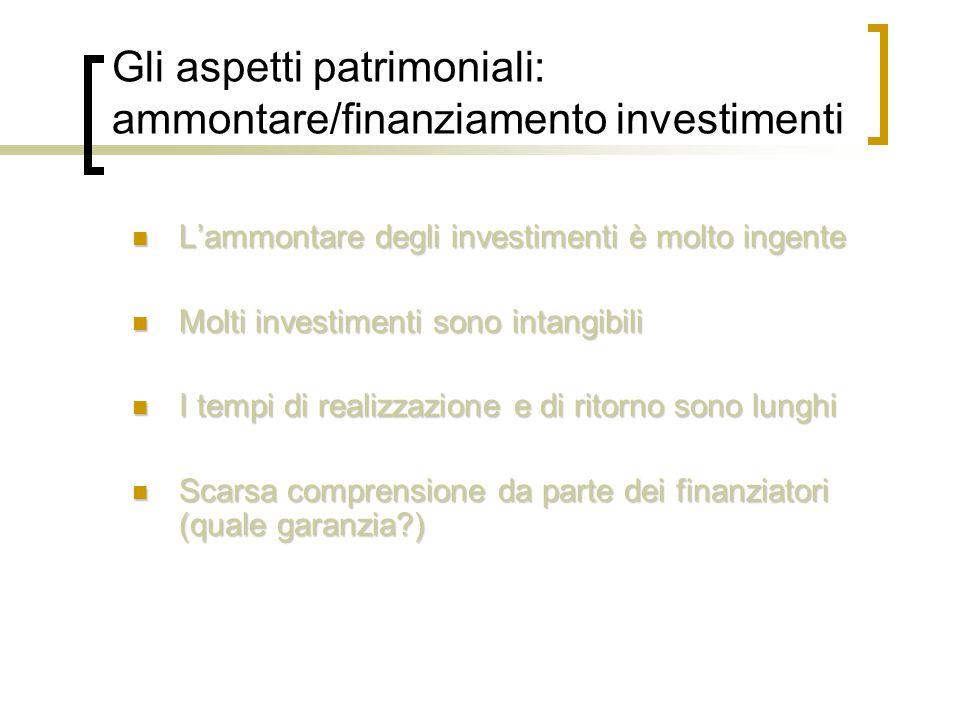 Gli aspetti patrimoniali: ammontare/finanziamento investimenti L'ammontare degli investimenti è molto ingente L'ammontare degli investimenti è molto ingente Molti investimenti sono intangibili Molti investimenti sono intangibili I tempi di realizzazione e di ritorno sono lunghi I tempi di realizzazione e di ritorno sono lunghi Scarsa comprensione da parte dei finanziatori (quale garanzia?) Scarsa comprensione da parte dei finanziatori (quale garanzia?)