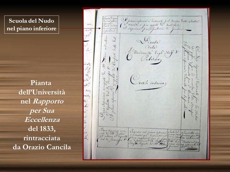 Scuola del Nudo nel piano inferiore Pianta dell'Università nel Rapporto per Sua Eccellenza del 1833, rintracciata da Orazio Cancila