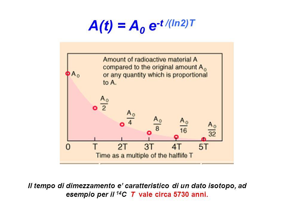 Il tempo di dimezzamento e' caratteristico di un dato isotopo, ad esempio per il 14 C T vale circa 5730 anni.